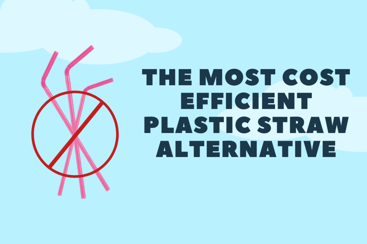 The Most Cost-Efficient Plastic Straw Alternative is...